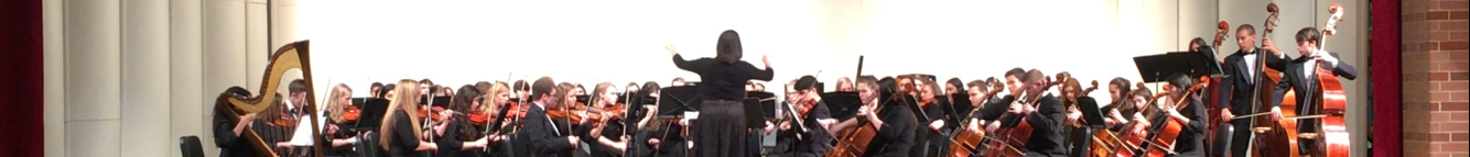 Adventures of a School Orchestra Teacher